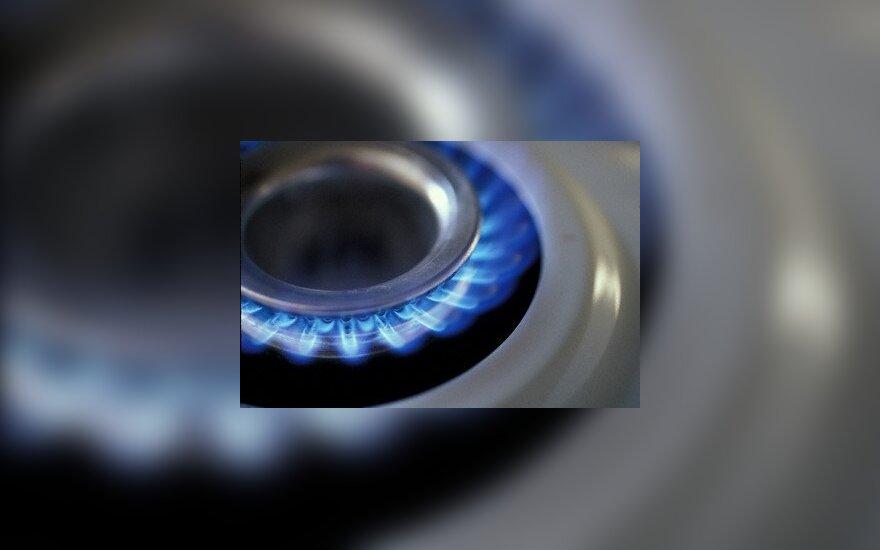 В недрах Литвы – большие запасы сланцевого газа?