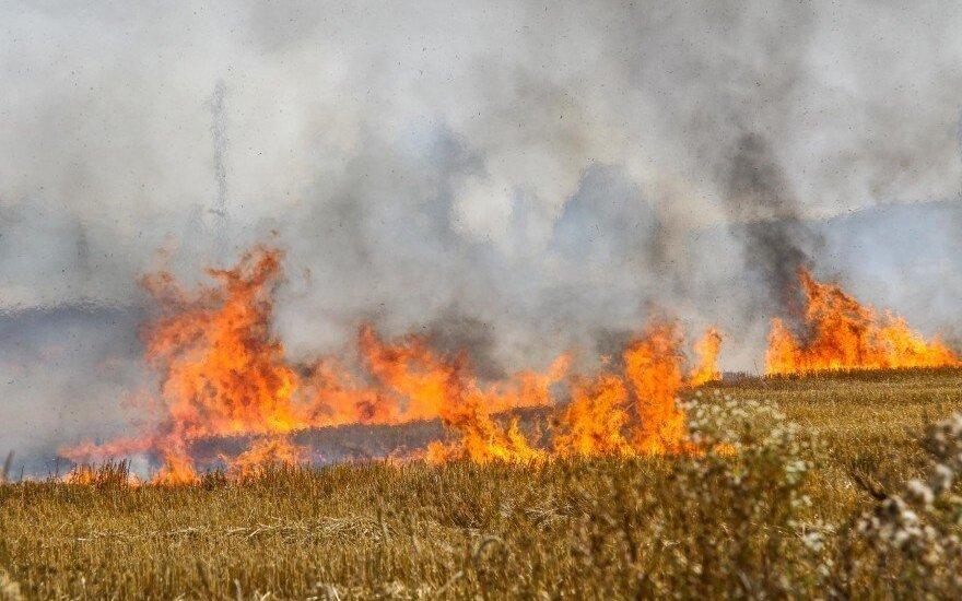 Didelis gaisras netoli Kauno: situaciją itin pavojinga