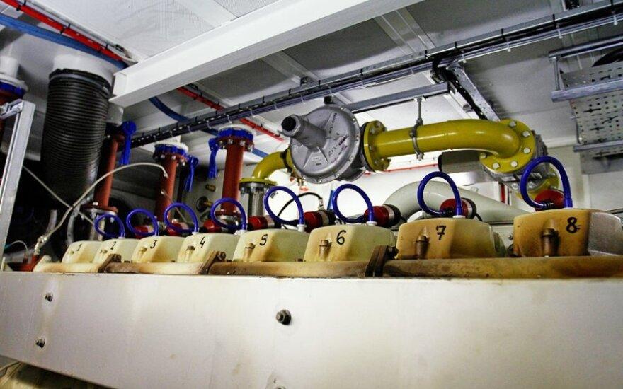 Компании США оценят потенциал новой газовой электростанции в Литве