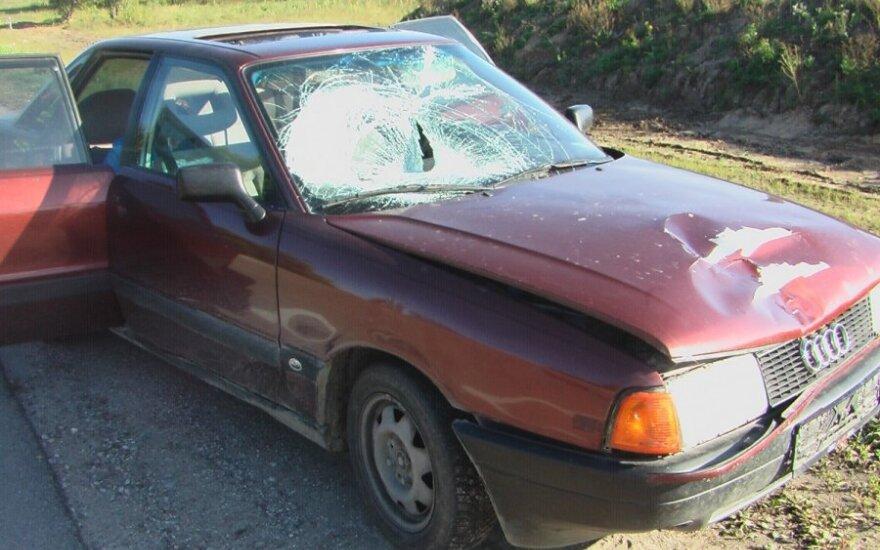 Сбитая студентом женщина оказалась по другую сторону машины
