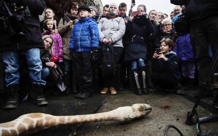 Vaikams Danijoje buvo leista stebėti, kaip zoologijos sode paskerdžiama žirafa