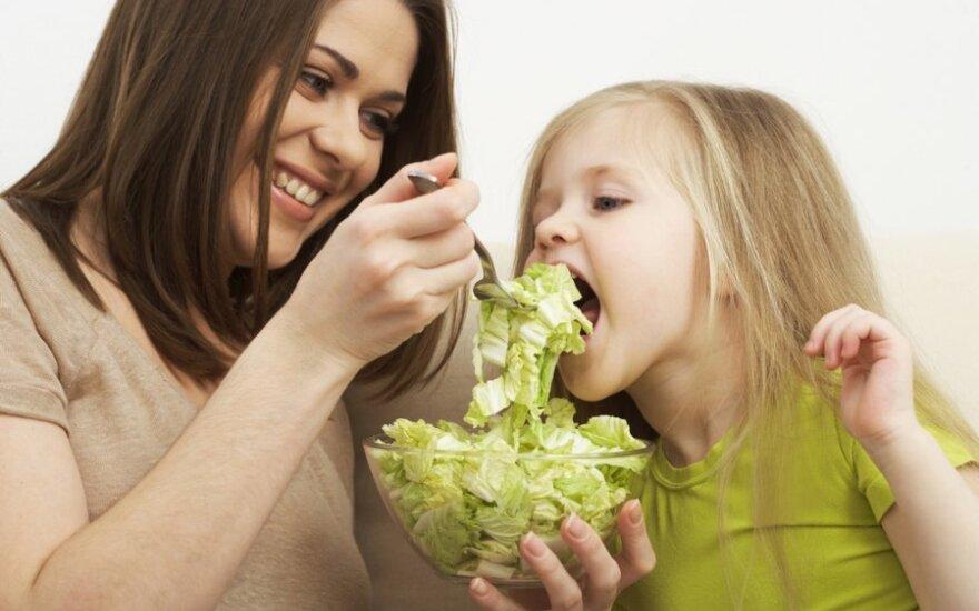 Топ-3 рецепта летних зеленых салатов