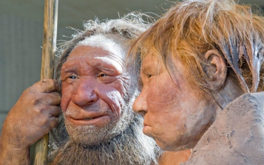 Neandertalczyk jako oddzielny gatunek