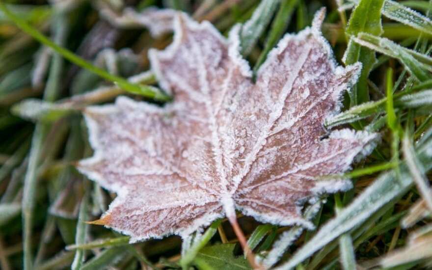 Прогноз: после заморозков порадует осеннее тепло