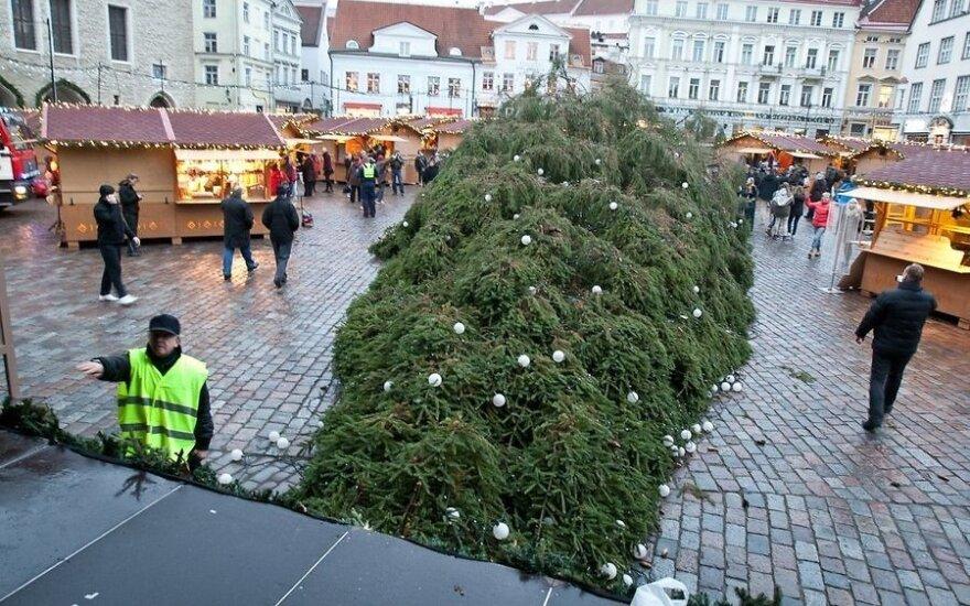 На Ратушной площади в Таллинне упала рождественская елка