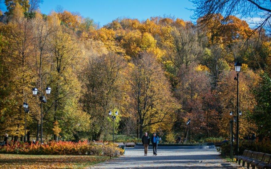 Климатолог рассказал, какой будет грядущая зима в Литве