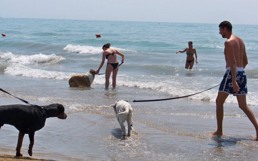 Šunų paplūdimiai