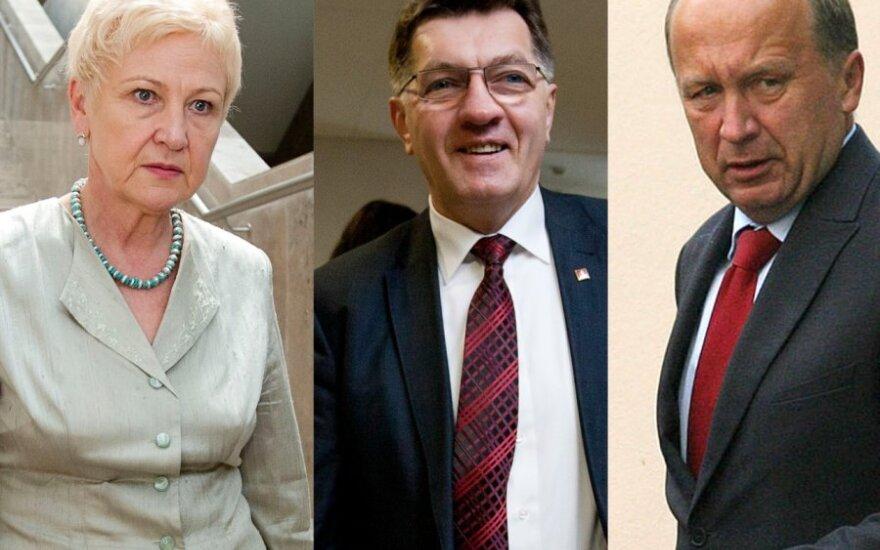 Irena Degutienė, Algirdas Butkevičius, Andrius Kubilius