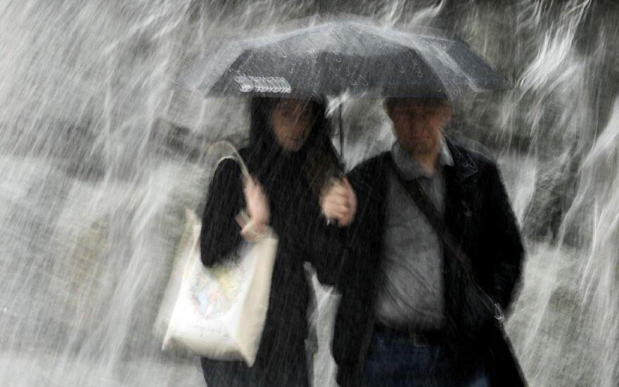 В результате урагана в Москве пострадали 168 человек