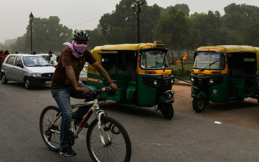 В Индии отмечена вспышка смертельного вируса Нипах