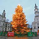 Kalėdų eglutė Kaune