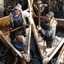 Žvejai renka jūrų dumblius