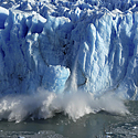 Ledynas