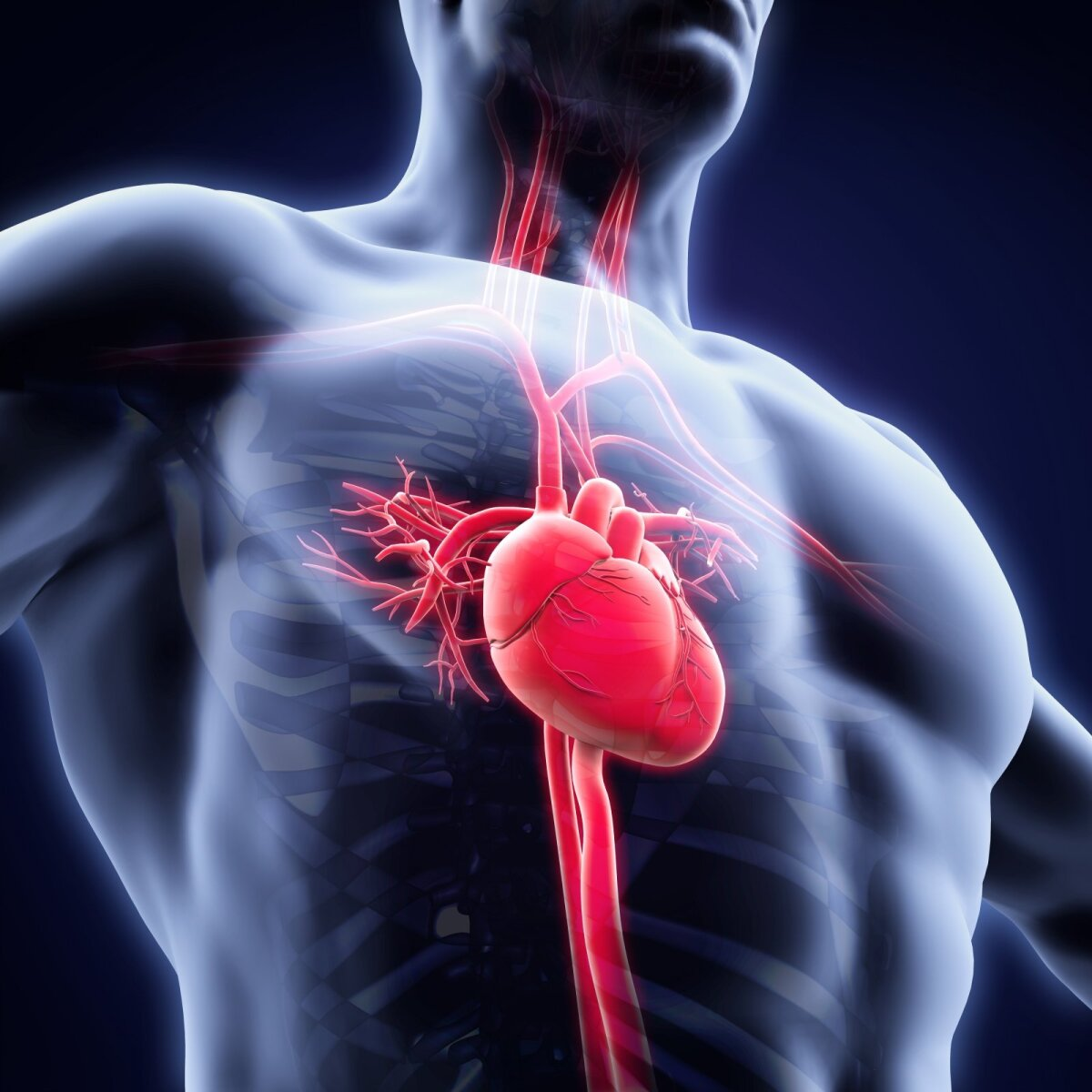 širdies sveikatos galvosūkis diabeto ir širdies sveikatos dieta