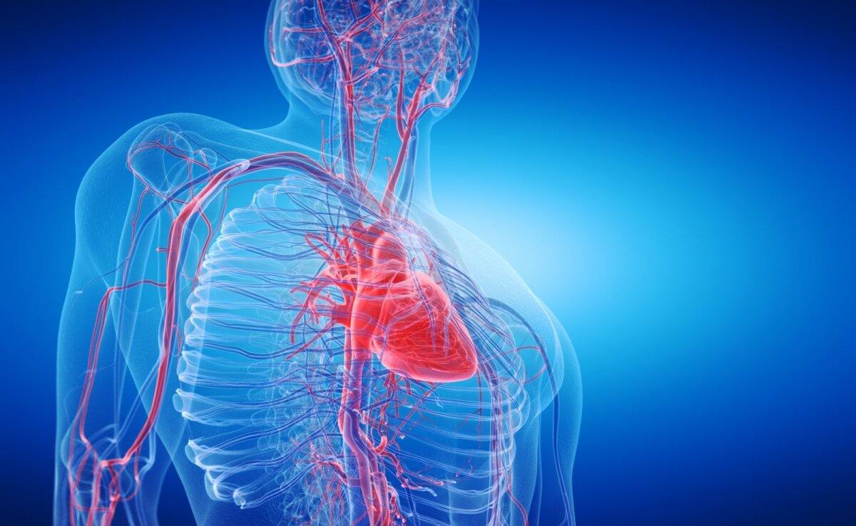 geriausi valgomi dalykai širdies sveikatai kuri dieta yra geresnė sergant hipertenzija