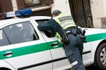 D. Grybauskaitė ragina įvertinti policijos reformos pirmuosius rezultatus
