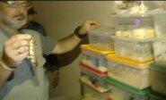 Buenos Airėse, privačiame bute rasta partija kontrabandai skirtų gyvačių
