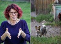Šunų trenerė paaiškino, kas yra geras šuns šeimininkas: kai kuriems apie šunis geriau nė nesvajoti