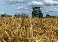 Ūkininkams vasara buvo sunki: nuostoliai šiemet – didesni nei pernai