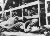 Žydų gydytojas parodė dar nepažįstamą Aušvico pusę