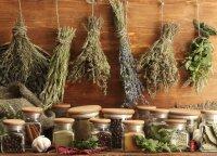 Naujausia turgaus tendencija: miško ir laukų gėrybės, kurių iki šiol nebuvo įmanoma nusipirkti