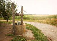 Nauja lietuviška realybė: šuliniuose nebėra vandens, džiūsta medžiai