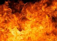 Vilniuje užsiliepsnojus butui nukentėjo moteris