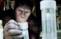 """""""Beždžionių planetos sukilimas""""       """"Forum Cinemas"""" nuotr."""