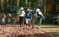 Niujorke net dviem kilometrais pagerintas ilgiausios gėlių girliandos rekordas