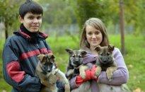 Tautmilės gyvūnų prieglaudos rytiniai siurprizai ieško namų!