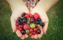 Parduodant mažus vaisių ir daržovių kiekius – minimalūs reikalavimai