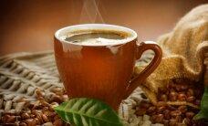 Kavos kultūros dienos virsta į festivalį