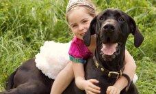 Šunų paroda, ledų šventė ir kiti savaitgalio renginiai