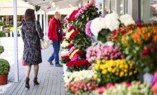 Pirkėjai apstulbę: kas nutiko gėlių kainoms?