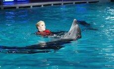 Projektas Žvaigždės ir delfinai