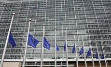 Lithuanian Seimas backs 'yellow card' procedure against EC's proposal