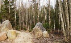 Akmenų ružos takas Tytuvėnų regioniniame parke