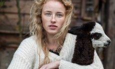 Kuriamus megztinius S. Rindzevičiūtė įamžino fotosesijoje alpakų fermoje