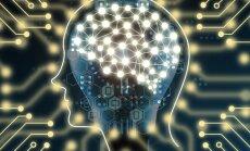 Smegenų paslaptys: matome ne taip, kaip yra tikrajame pasaulyje