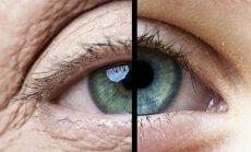 20-20-20 taisyklė: kompiuterio pribaigtos akys tikrai padėkos