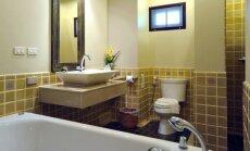 Ir nedidelė vonia gali būti graži