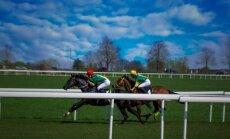 Žirgų lenktynės Raseinių hipodrome / Foto: Eidvydas Kuniauskas