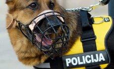 Kauno policijos šuo