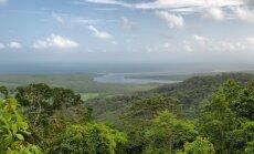 Brazilijos ątogražų miškai