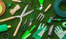 Pavasaris ant nosies: kovo darbai sode ir darže