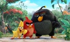 Kadras iš filmo Piktieji paukščiai. Filmas