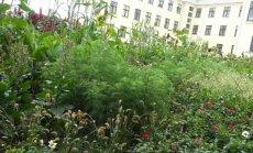 Marijampolės botanikos centras