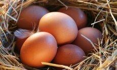 JAV audito metu lietuviškų kiaušinių gaminiai sulaukė palankaus vertinimo
