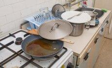 21 gudrybė: namų tvarkymas nenaudojant chemikalų