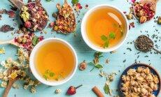 Skanios arbatos paslapčių mokykitės iš mongolų